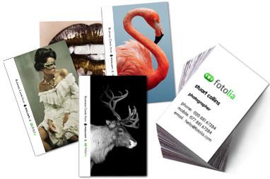 50 бесплатных визиток от фотобанка Fotolia