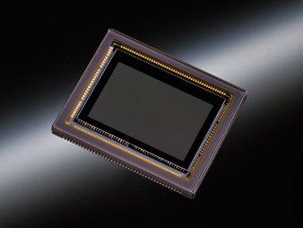 Зеркальная фотокамера Nikon D7100 матрица